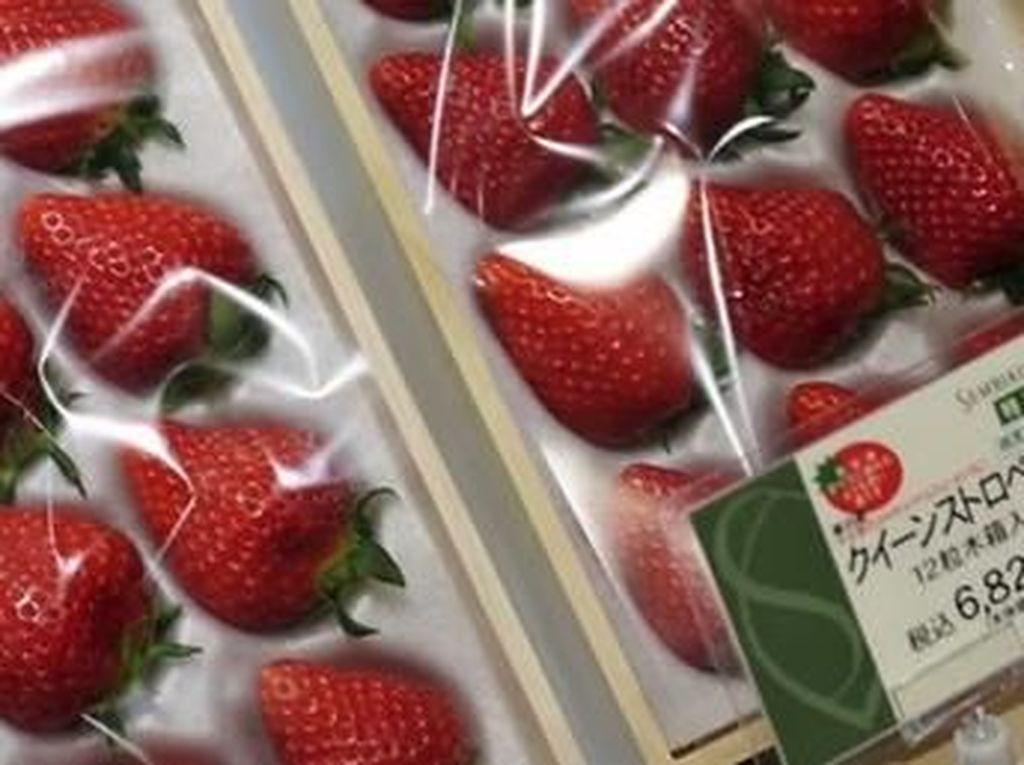Sembikiya Queen Stawberry jadi salah satu buah strawberry yang cukup mahal. 12 buah stawberry dijual seharga $85 (Rp 1.2 juta). Foto: Istimewa