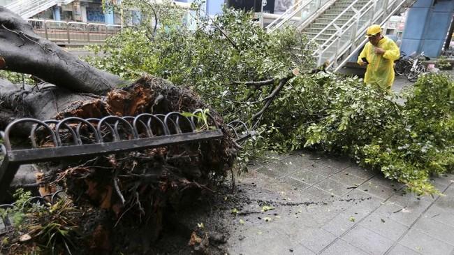 Sementara itu, angin berkecepatan 100 kilometer perjam berembus dan menghancurkan sekitar 2 ribu pohon di kota urban Ningde. (Reuters/Eason Lam)