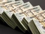 Naik US$ 10 M dalam 3 Bulan, Cadev RI Dekati Rekor Tertinggi