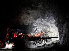 Saham Renuka Melejit 15%, Berharap dari Produksi Tambang Emas