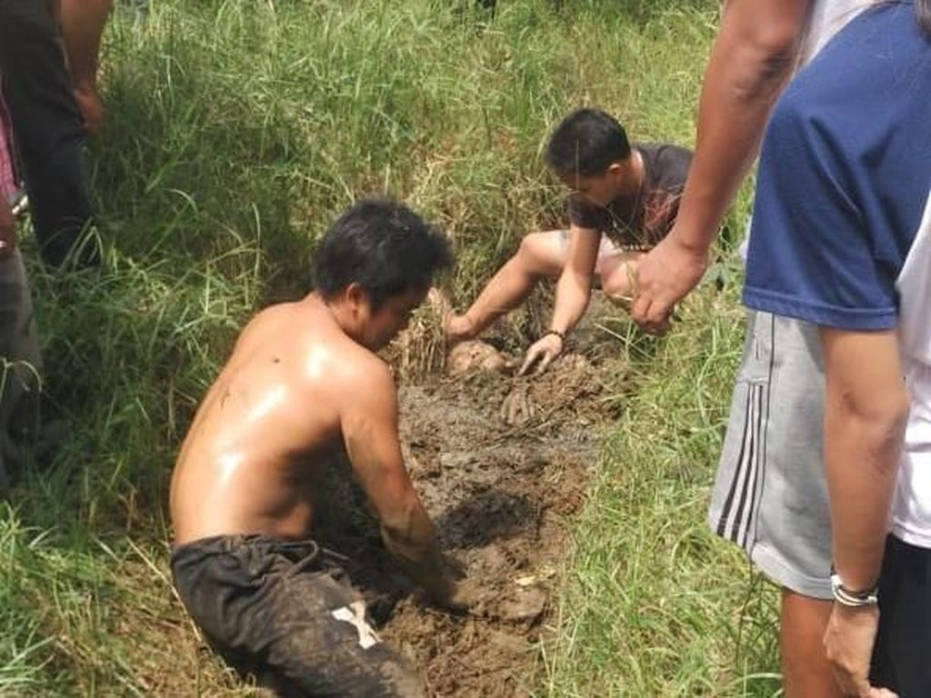 Susanto tersetrum dan ditolong warga sekitar dengan cara setengah badannya dikubur ke lumpur.