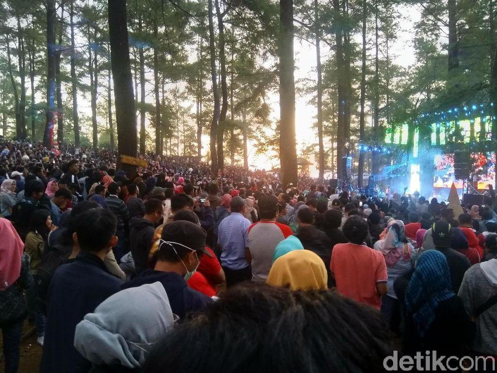 Foto: Kemping Sambil Nonton Konser Musik di Hutan Malino