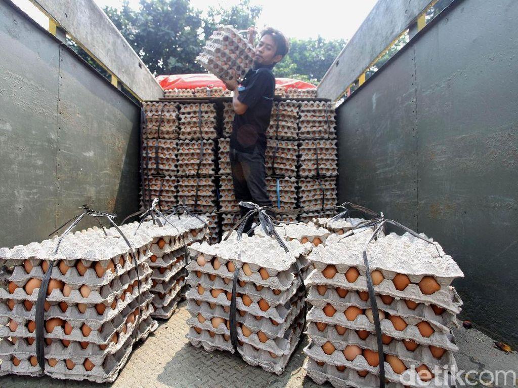 Sebelumnya, harga telur ayam di beberapa daerah sempat meningkat tajam. Bahkan, harga telur ayam sempat dipatok Rp 30.000 per kg.