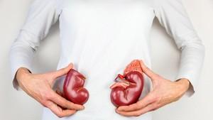 7 Buah Super untuk Ginjal Sehat