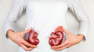 Cara Menjaga Ginjal Demi Tubuh yang Sehat