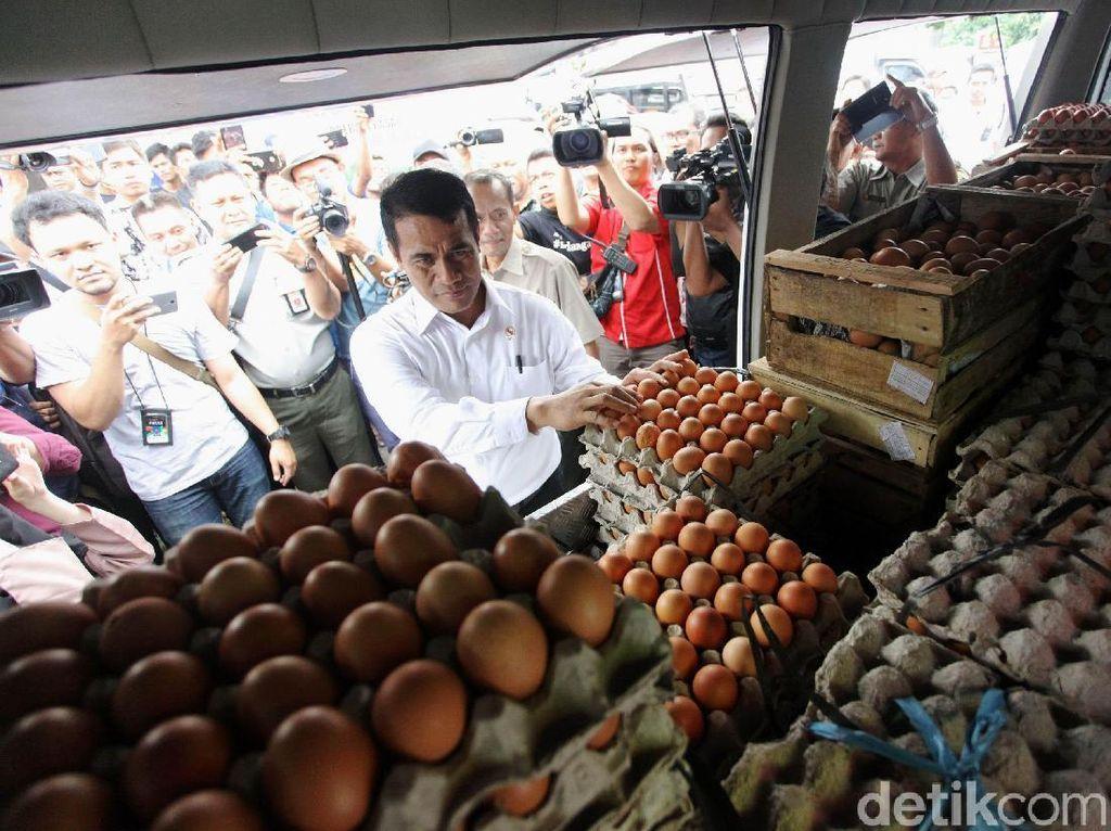 Telur ayam tersebut akan disebar ke 50 titik pasar di Jabodetabek.