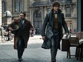 Box Office 'Fantastic Beasts 2' Kalah Tarung di China