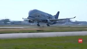 VIDEO: Beluga XL, Pengangkut Badan Pesawat Terbang Perdana