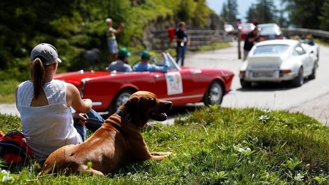 Penonton reli yang bersantai sambil melihat para mobil klasik melintas di jalur perlombaan. (REUTERS/Leonhard Foeger)