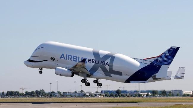 Dengan luas ruang penyimpanan lebih besar, daya angkut Airbus Beluga XL bertambah dua kali lipat dan bakal diperkirakan bisa membawa komponen pesawat dalam jumlah lebih banyak. (REUTERS/Regis Duvignau).