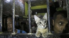 FOTO: Sidak Lapas Buntut OTT KPK