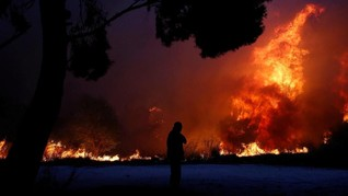 Kebakaran Yunani, Jasad Anak Kembar Memeluk Kakek-Neneknya