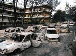 Saat Kebakaran Hutan Melanda Negeri Dewa-Dewi, Yunani