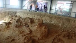 Peneliti Temukan Jejak Kulit Kaki Dinosaurus di Korsel