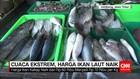 Dampak Cuaca Ekstrem Harga Ikan Laut Naik