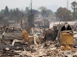 Kebakaran Hutan California, Hanguskan ribuan Tempat Tinggal