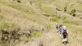 Ratusan Pendaki Panik saat Rinjani Bergetar Diguncang Gempa