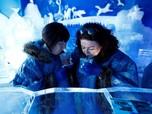 Musim Panas, Kafe Es Bergaya Kutub Diserbu Pengunjung