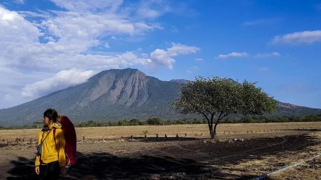 Wisatawan berjalan dengan latar belakang Gunung Baluran.Taman Nasional Baluran bisa dijangkau dari Situbondo atau Banyuwangi, Jawa Timur. Di taman nasional ini pemandangan sabana bak di Afrika sangat terasa.