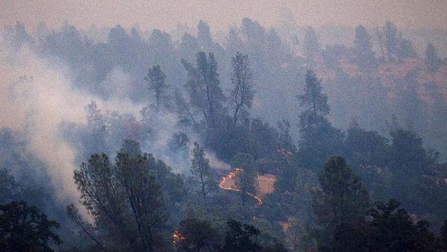Kebakaran di California Meluas, Enam Orang Tewas
