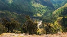 Torean, Jalur Pendakian Menantang di Punggung Rinjani