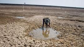 Krisis Air, Warga Tulungagung Berburu Sisa Genangan Sungai