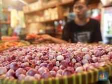 Prabowo-Sandi Janjikan Borong Bawang Merah Rp 15.000/Kg