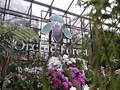 Orchid Forest Cikole, Destinasi Wisata Alam di Lembang