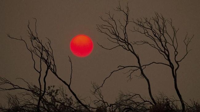 Matahari terbenam pada sebuah bukit di Redding, California, Amerika Serikat. (REUTERS/Bob Strong)