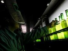 Minuman Alkohol Dilarang, Saham-saham Produsen Bir Rontok!