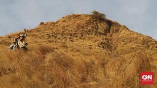 Musim Hujan Akan Pulihkan Kerusakan Savana Gili Lawa Darat