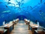 Ingin Liburan? Coba Hotel Aquarium Bawah laut di Maldives Ini