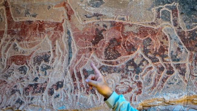 Salah satu lukisan yang terpenting dari temuan di gua Taira ini adalah gambar hewan Llama seperti pada gambar. Ini menunjukkan peran penting hewan tersebut dalam kehidupan gembala di masa lalu. (AFP PHOTO / Martin BERNETTI)