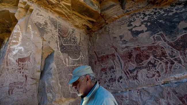 Lukisan-lukisan di gua ini menjadi bukti peran penting Llama dalam kehidupan masyarakat Andes. Dan lukisan ini tengah berharap mendapatkan pengakuan dunia sebagai warisan budaya versi UNESCO. (AFP PHOTO / Martin BERNETTI)