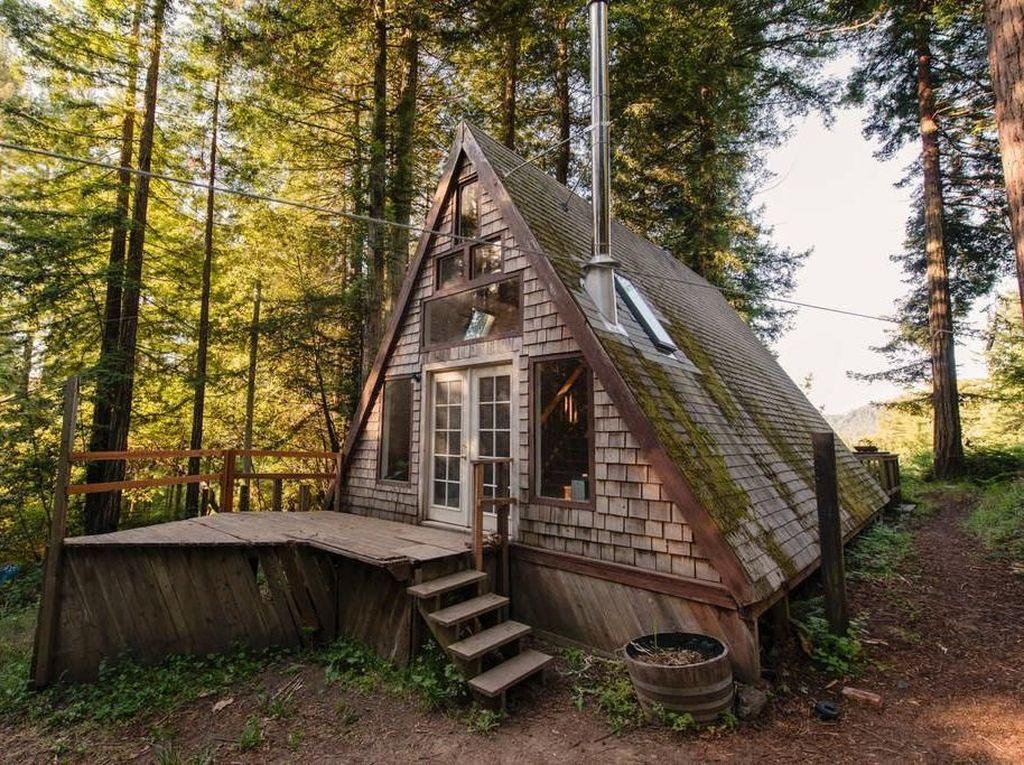 Rumah Ini Seperti Terbengkalai di Hutan, Tapi Dalamnya Bikin Tercengang