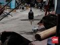 Gili Trawangan Menjelma 'Pulau Mati' Usai Dilanda Gempa