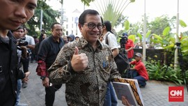 Istana Buka Suara Soal Dugaan Surat Terbuka OPM untuk Jokowi
