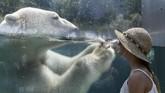 Seorang perempuan melihat ke arah seekor beruang kutub yang sedang mendinginkan badan di sebuah kebun binatang di Mulhouse. Beberapa bagian Eropa masih dilanda gelombang panas. (AFP PHOTO / SEBASTIEN BOZON)
