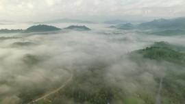 VIDEO: Bersua dengan Suku Dayak di Kalimantan Tengah