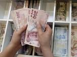 Gara-gara Bank Sentral Dovish, Lira Turki Anjlok 1,5%