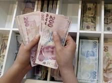 Kata Pengusaha Soal Jatuhnya Lira yang Sebabkan Krisis Turki