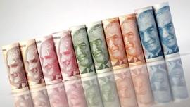 China Yakin Masalah Ekonomi Turki Hanya Sementara