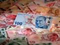 Tak Usah Panik Terseret Krisis Ekonomi Turki