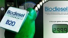 Biodiesel B30 Diuji Tahun Depan, Diprediksi Gantikan B20