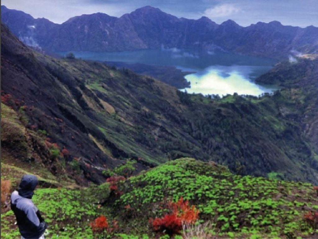 Gunung Rinjani Dibuka Tahun 2020, Bagaimana Nasib Pelaku Wisatanya?