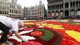 Bunga-bunga itu dirangkai di lapangan seluas 1,800 meters persegi dan menjadi daya tarik wisata musim panas. (REUTERS/Yves Herman).
