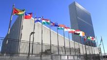 Hasil Survei: Sepertiga Karyawati PBB Alami Pelecehan Seksual