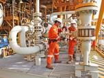 PGN Integrasikan Bisnis Saka di Bawah Induk Holding Migas