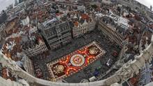 FOTO: Festival 'Karpet' Bunga Belgia yang Nyaris Batal