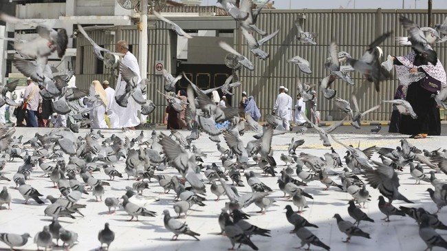 Jemaah calon haji berjalan di antara merpati di pelataran Masjidil Haram di Mekah, Arab Saudi, Kamis (16/8). Umat Islam dari seluruh dunia berkumpul di kota suci untuk menjalani ibadah tahunan yang merupakan satu dari lima rukun Islam. (AFP PHOTO/AhamdAl-Rubaye).